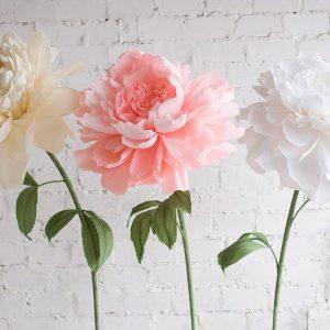 Большие цветы из гофрированной бумаги своими руками: шаблоны и инструкции, фото и видео мастер-класс по созданию ростовых цветов для декораций