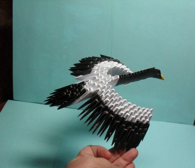 фото птиц журавлей своими руками многих